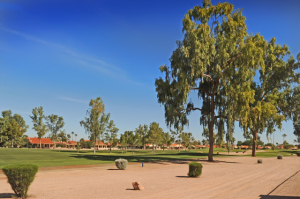 Sun Lakes golf course homes for sale