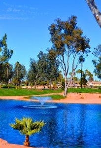 Golf course at Cottonwood Country Club