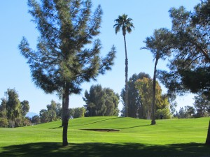 Golf at Sun Lakes Country Club