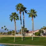 Real Estate in Sun Lakes AZ