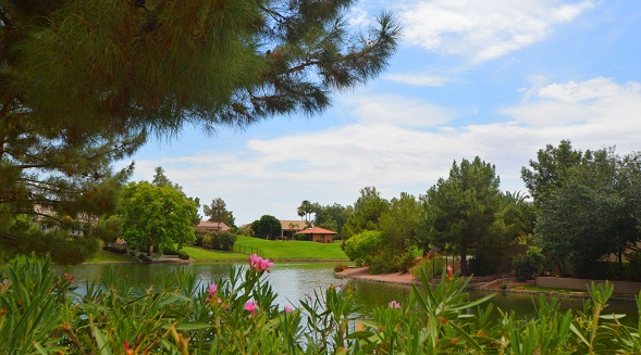 Lakefront homes for sale in Ocotillo