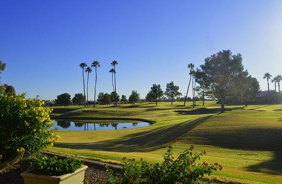Golf courses in Sun Lakes AZ
