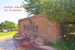 Homes for sale in Trilogy Power Ranch