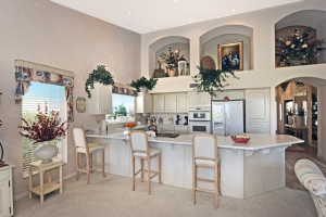24818 Stoney Lake kitchen