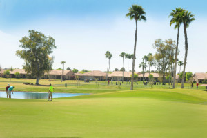 Sun Lakes AZ water and golf course lots