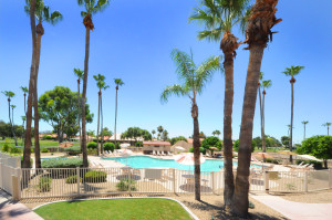 Pool Sun Lakes Palo Verde