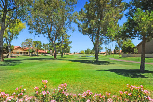 Sun Lakes Palo Verde Golf Course