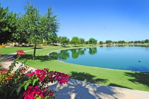 Homes for sale in Sun Lakes Oakwood