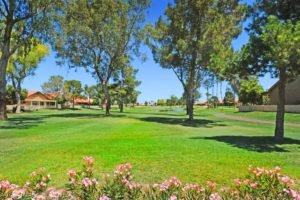 Golf in Active Adult Retirement Communities Near Phoenix, AZ