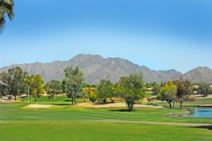 Homes for Sale in Solera Chandler