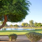 Visit Cottonwood Country Club in Sun Lakes AZ