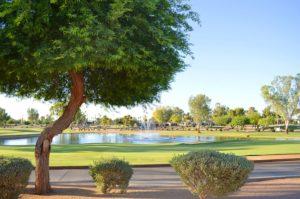 Enjoy Cottonwood Country Club in Sun Lakes AZ