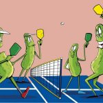 The game of pickleball in Sun Lakes AZ is one the Americas fastest growing sports.