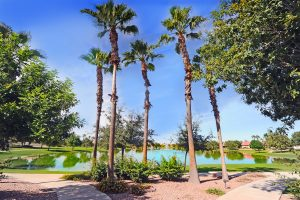 The beauty of living at 24314 S Agate Dr Sun Lakes AZ!