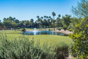 Enjoy the view at your new home in Sun Lakes Oakwood!